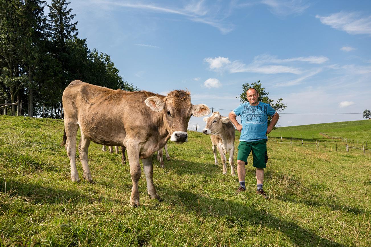 Bauer mit Kuh auf grüner Wiese